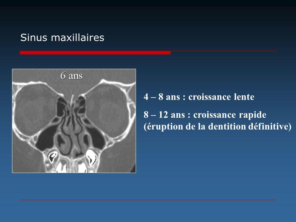 Sinus maxillaires 4 – 8 ans : croissance lente.