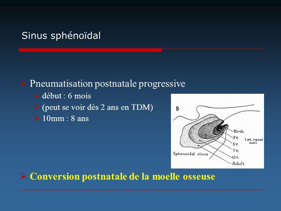 Pneumatisation postnatale progressive