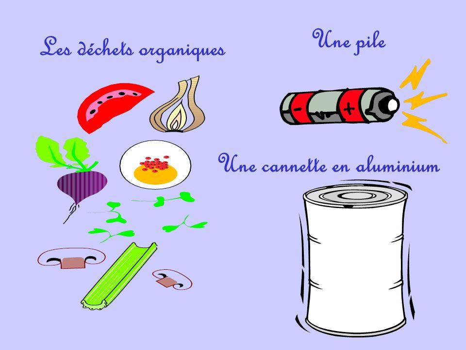 Les déchets organiques Une cannette en aluminium