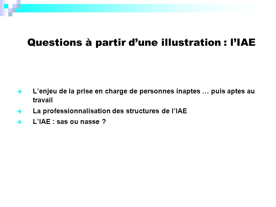 Questions à partir d'une illustration : l'IAE