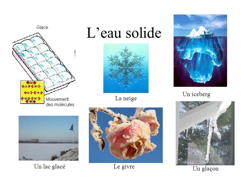 L'eau solide Un iceberg La neige Un lac glacé Le givre Un glaçon