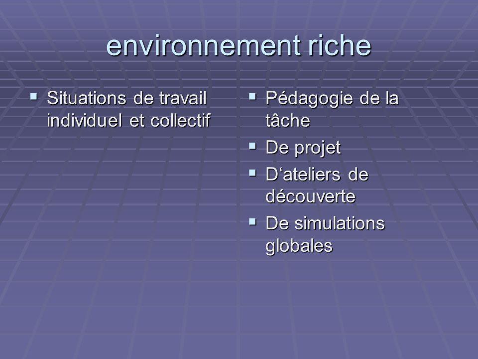 environnement riche Situations de travail individuel et collectif