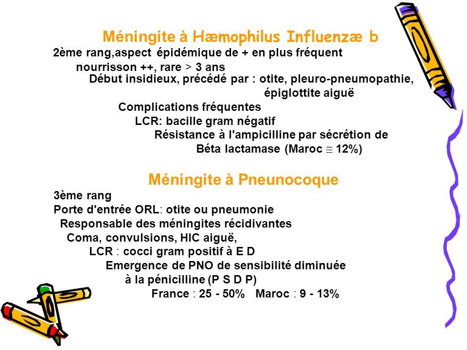Méningite à Hæmophilus Influenzæ b Méningite à Pneunocoque