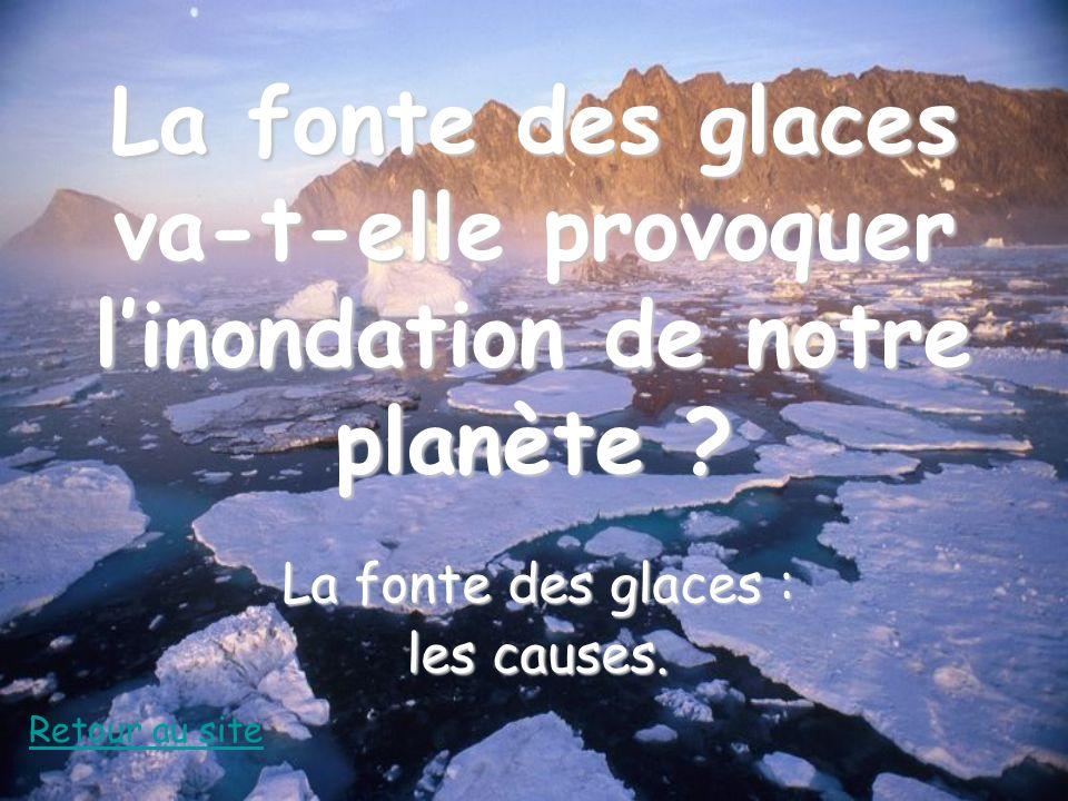 La fonte des glaces : les causes.