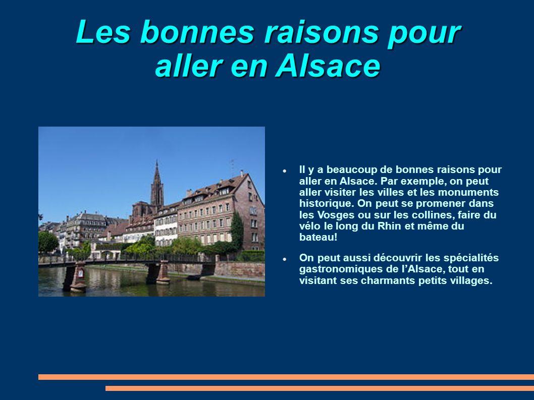 Les bonnes raisons pour aller en Alsace