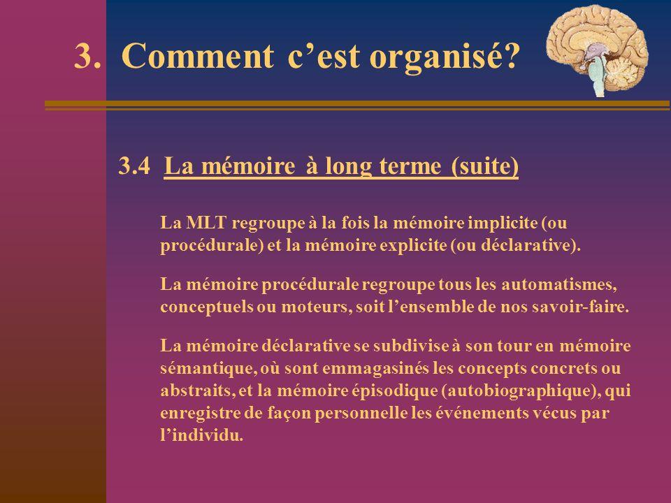 3. Comment c'est organisé
