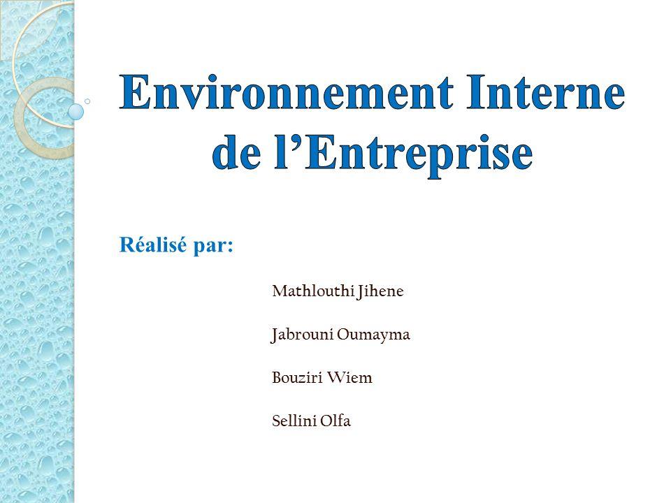 Environnement Interne de l'Entreprise