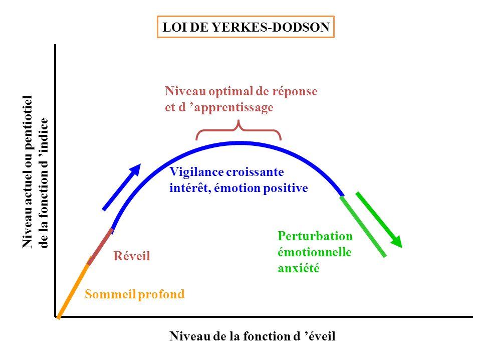 LOI DE YERKES-DODSON Niveau optimal de réponse. et d 'apprentissage. Niveau actuel ou pentiotiel.