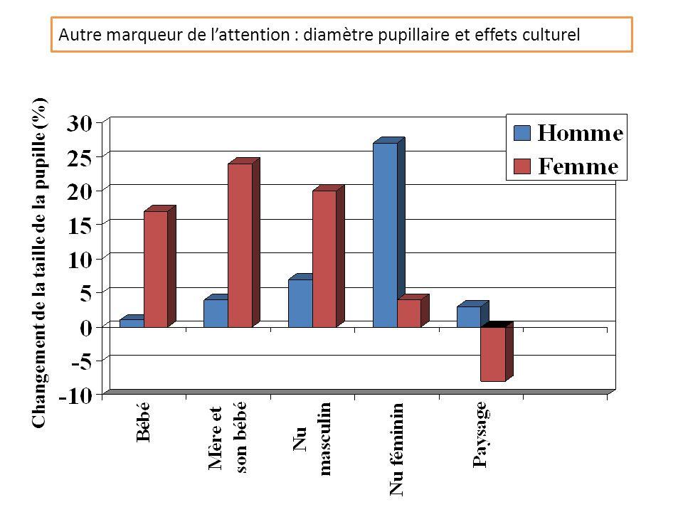 Autre marqueur de l'attention : diamètre pupillaire et effets culturel