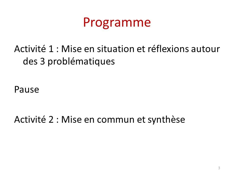 Programme Activité 1 : Mise en situation et réflexions autour des 3 problématiques Pause Activité 2 : Mise en commun et synthèse