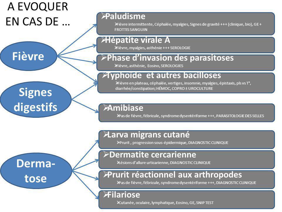 Fièvre Signes digestifs Derma-tose