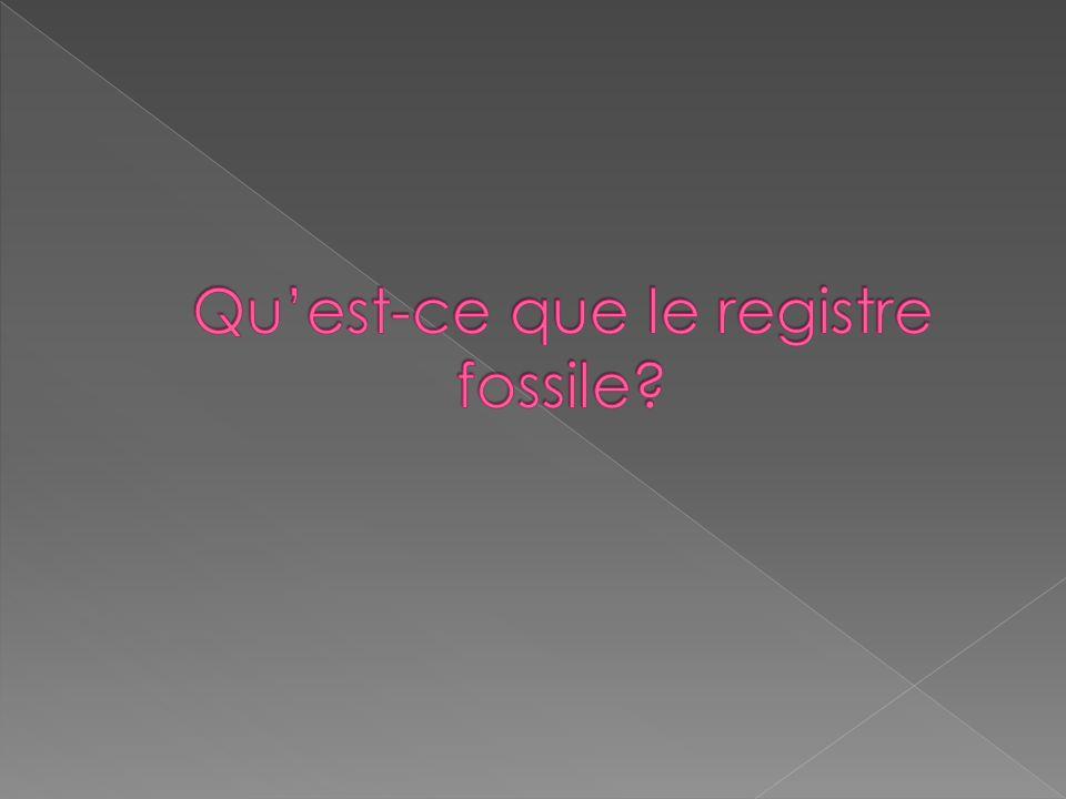 Qu'est-ce que le registre fossile
