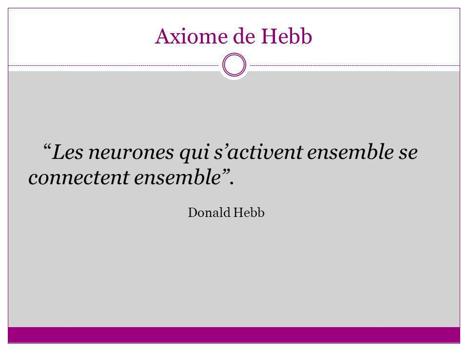 Axiome de Hebb Les neurones qui s'activent ensemble se connectent ensemble . Donald Hebb