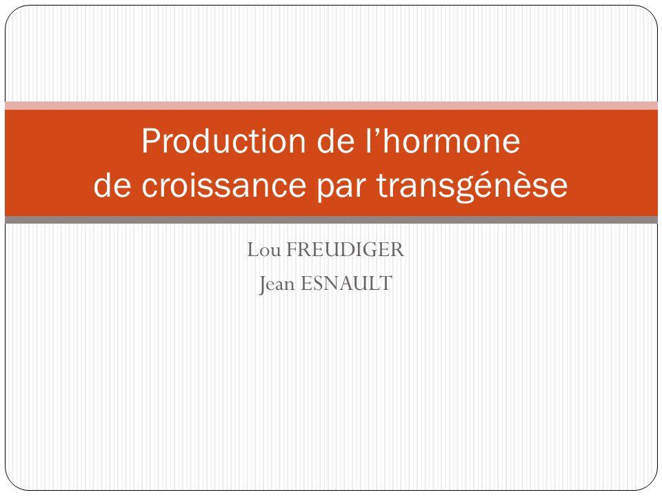 Production de l'hormone de croissance par transgénèse