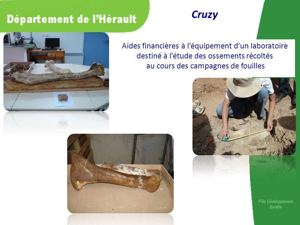 Cruzy Aides financières à l'équipement d'un laboratoire destiné à l'étude des ossements récoltés au cours des campagnes de fouilles.