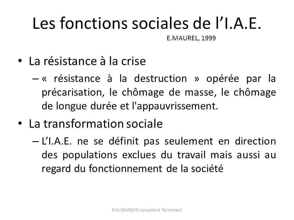 Les fonctions sociales de l'I.A.E. E.MAUREL, 1999