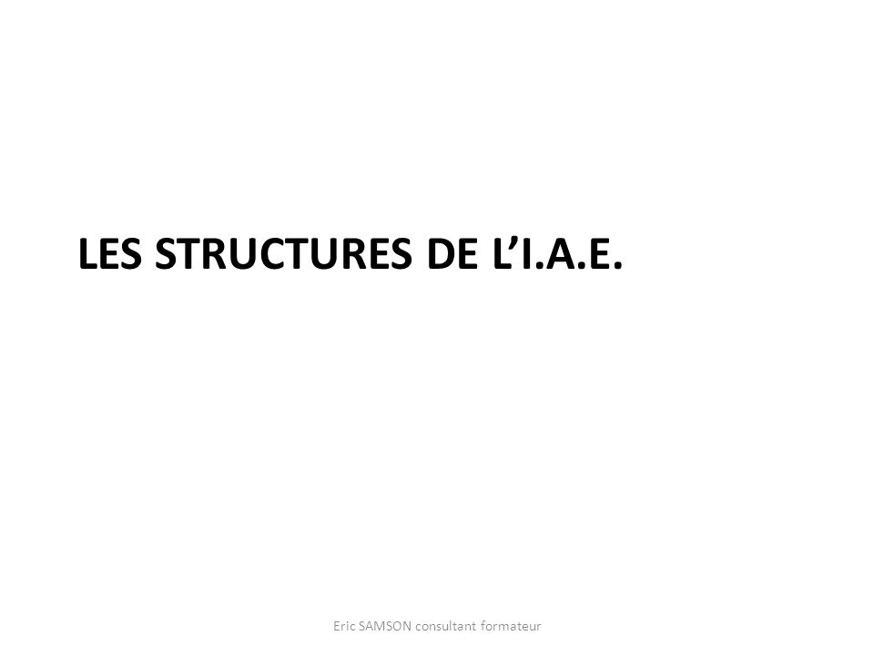 Les structures de l'I.A.E.