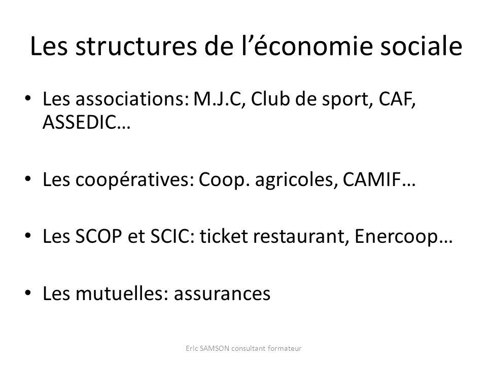 Les structures de l'économie sociale