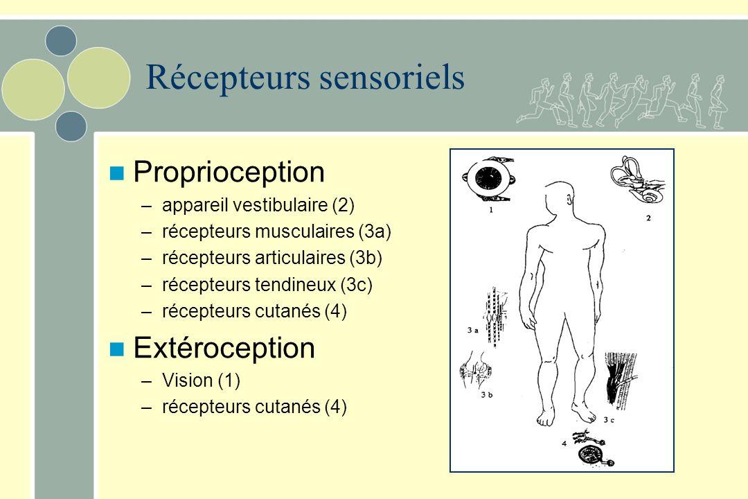 Récepteurs sensoriels