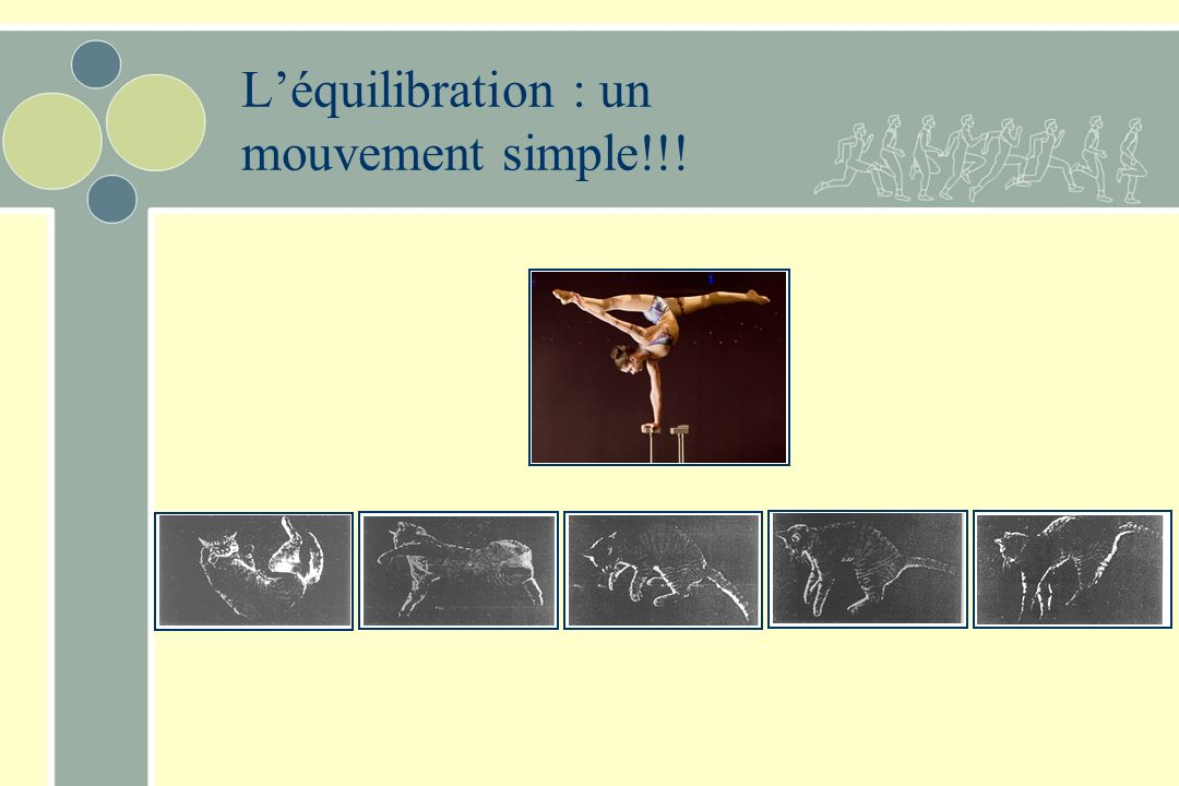 L'équilibration : un mouvement simple!!!