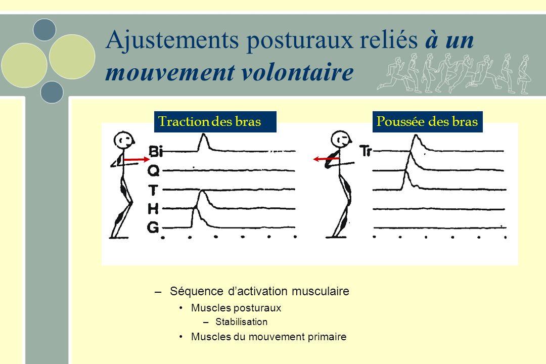 Ajustements posturaux reliés à un mouvement volontaire