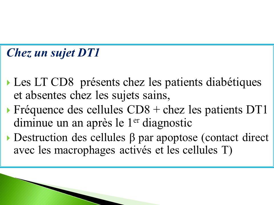 Chez un sujet DT1 Les LT CD8 présents chez les patients diabétiques et absentes chez les sujets sains,