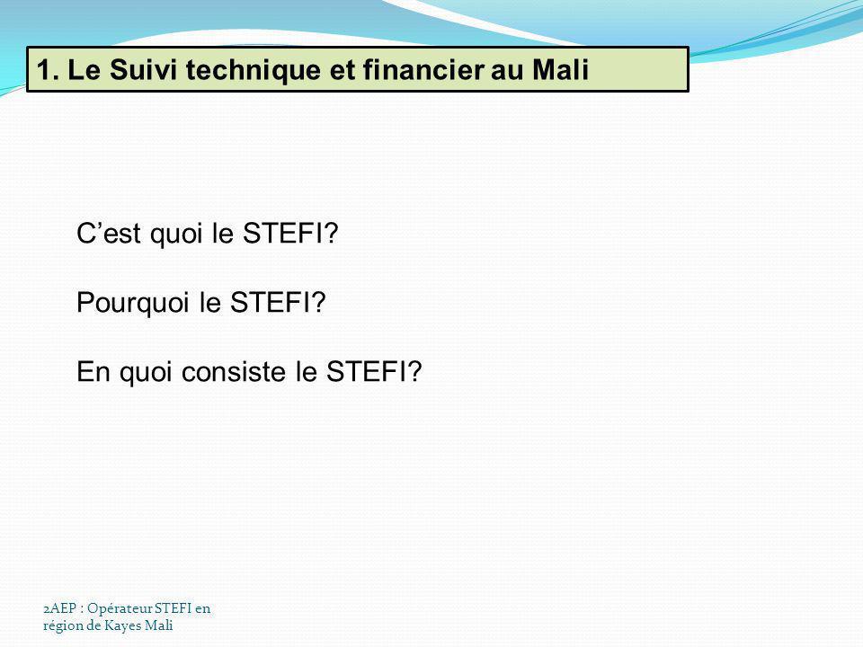 1. Le Suivi technique et financier au Mali