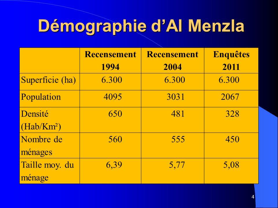 Démographie d'Al Menzla