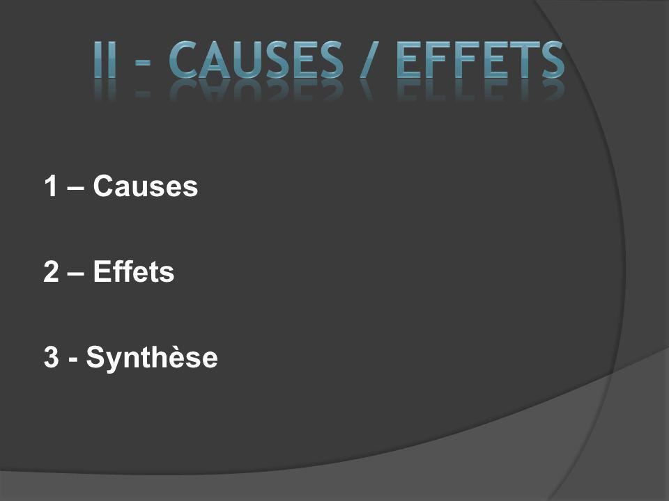 II – CAUSES / EFFETS 1 – Causes 2 – Effets 3 - Synthèse