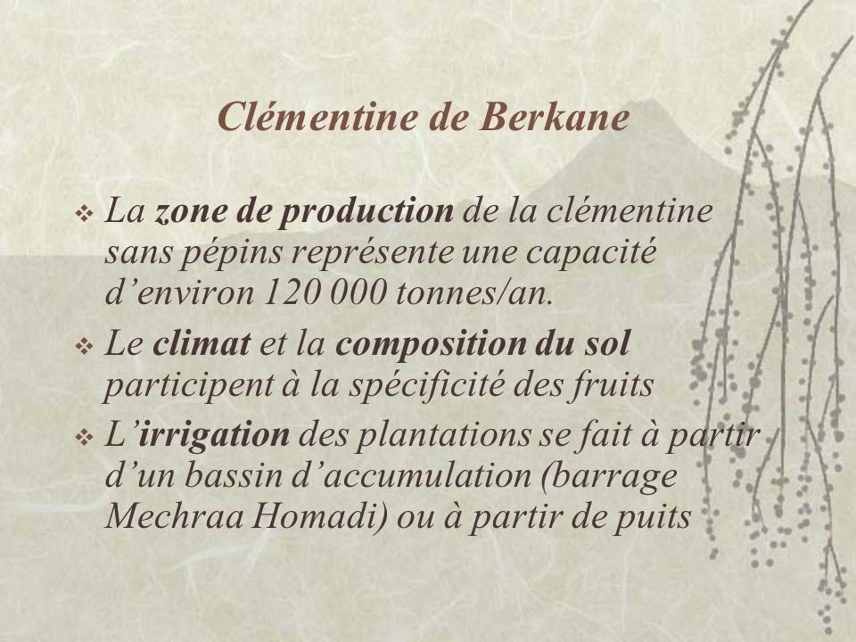 Clémentine de Berkane La zone de production de la clémentine sans pépins représente une capacité d'environ 120 000 tonnes/an.