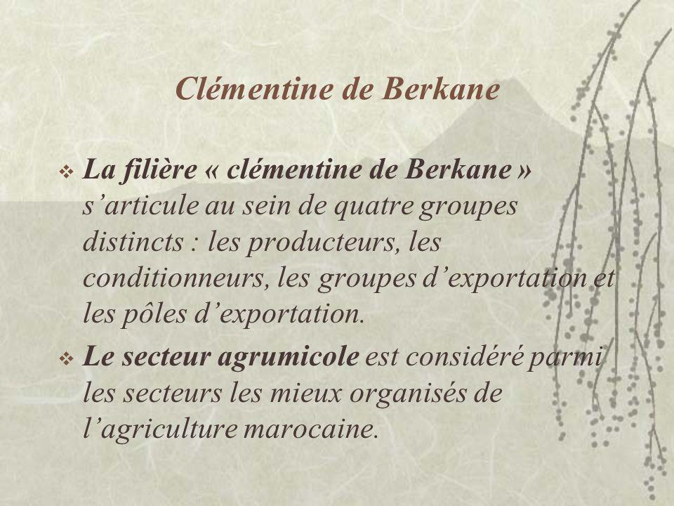 Clémentine de Berkane
