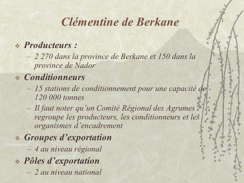Clémentine de Berkane Producteurs : Conditionneurs