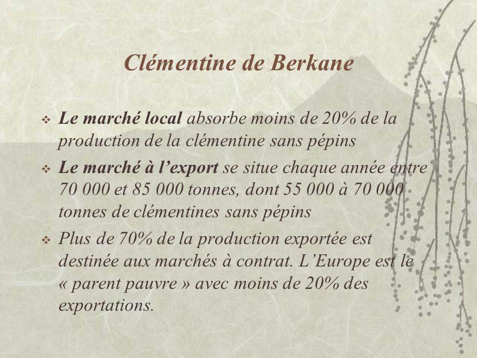 Clémentine de Berkane Le marché local absorbe moins de 20% de la production de la clémentine sans pépins.