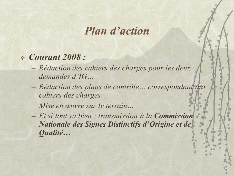 Plan d'action Courant 2008 :