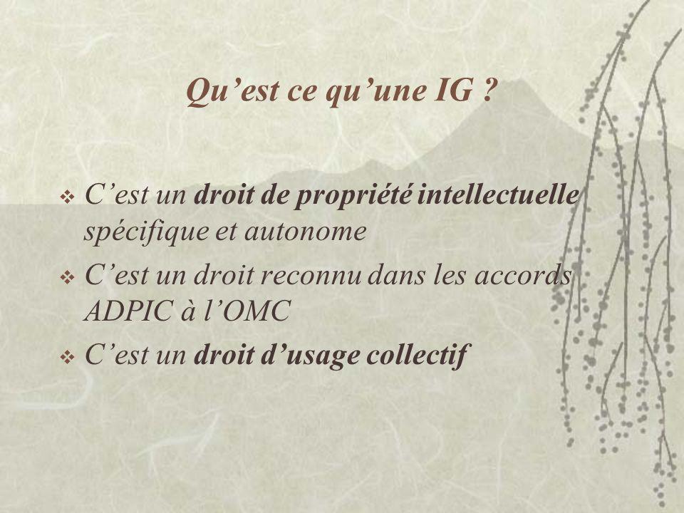 Qu'est ce qu'une IG C'est un droit de propriété intellectuelle spécifique et autonome. C'est un droit reconnu dans les accords ADPIC à l'OMC.
