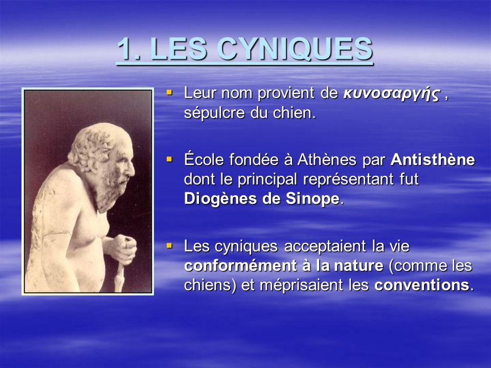1. LES CYNIQUES Leur nom provient de κυνοσαρүής , sépulcre du chien.
