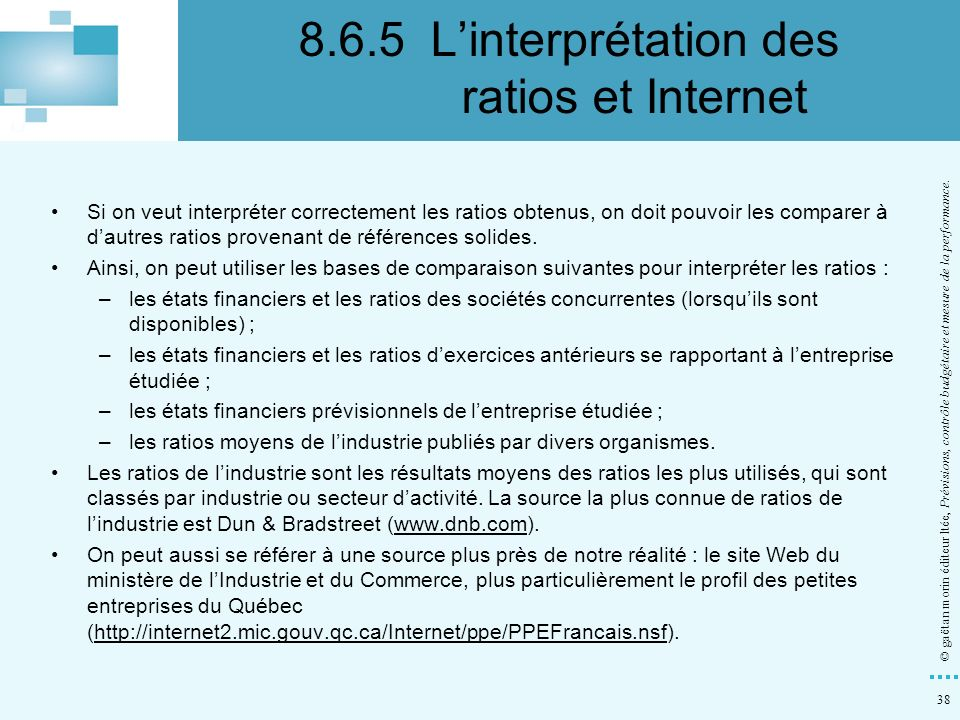 8.6.5 L'interprétation des ratios et Internet
