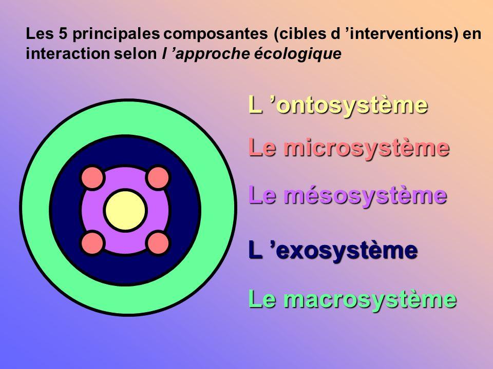 L 'ontosystème Le microsystème Le mésosystème L 'exosystème