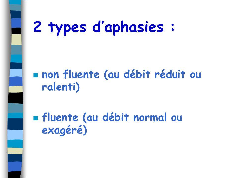 2 types d'aphasies : non fluente (au débit réduit ou ralenti)