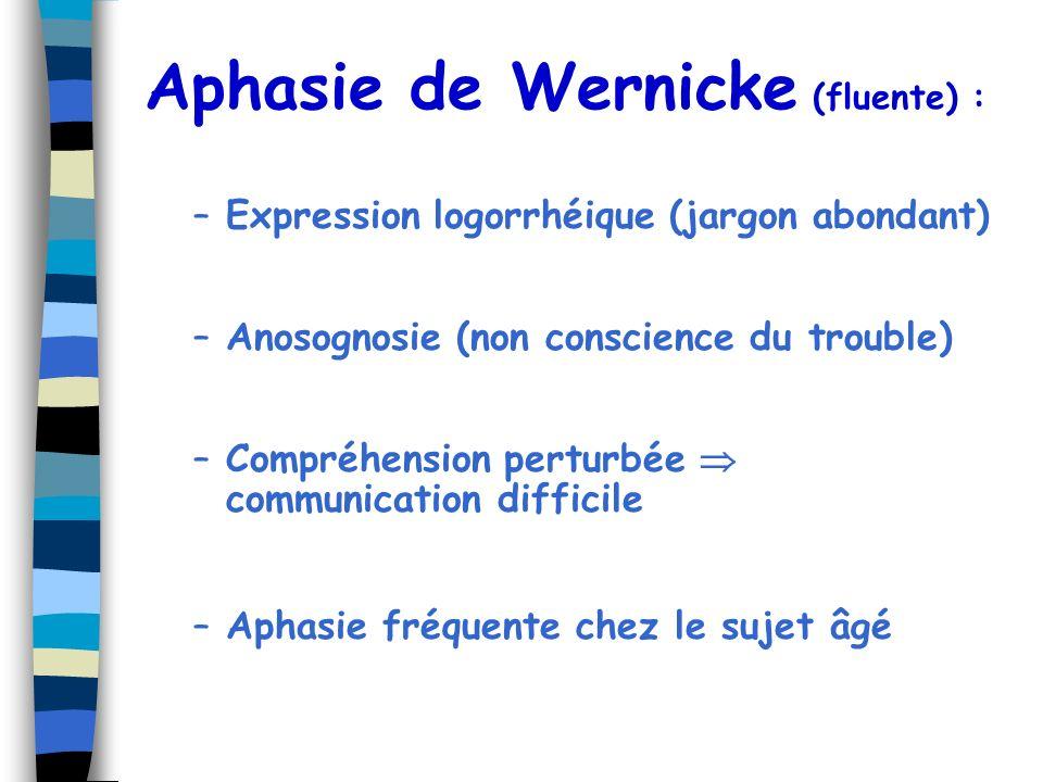 Aphasie de Wernicke (fluente) :