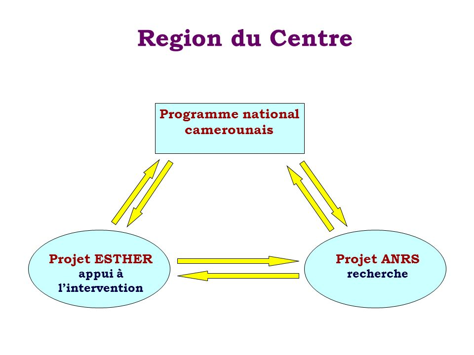 Programme national camerounais appui à l'intervention