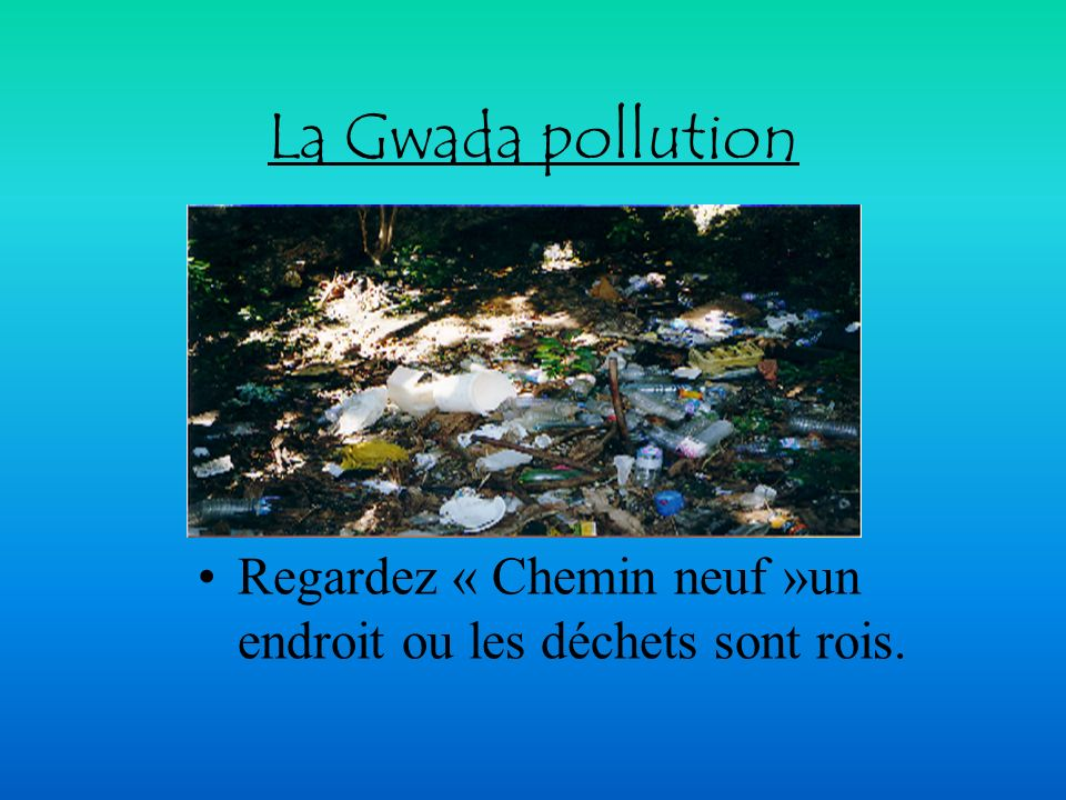 La Gwada pollution Regardez « Chemin neuf »un endroit ou les déchets sont rois.