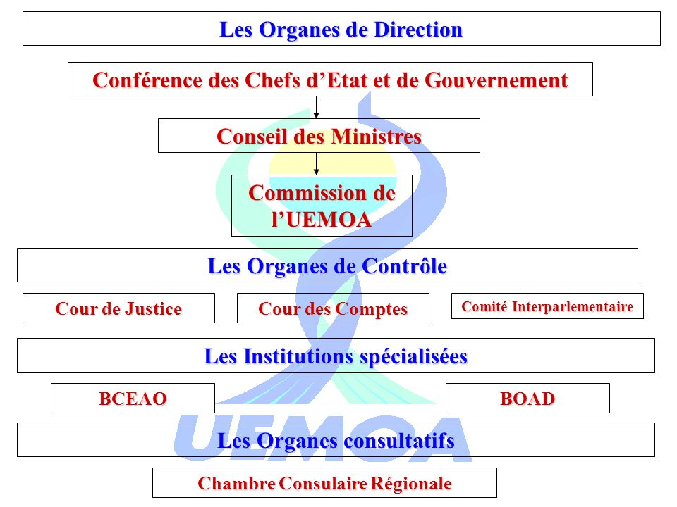 Les Organes de Direction