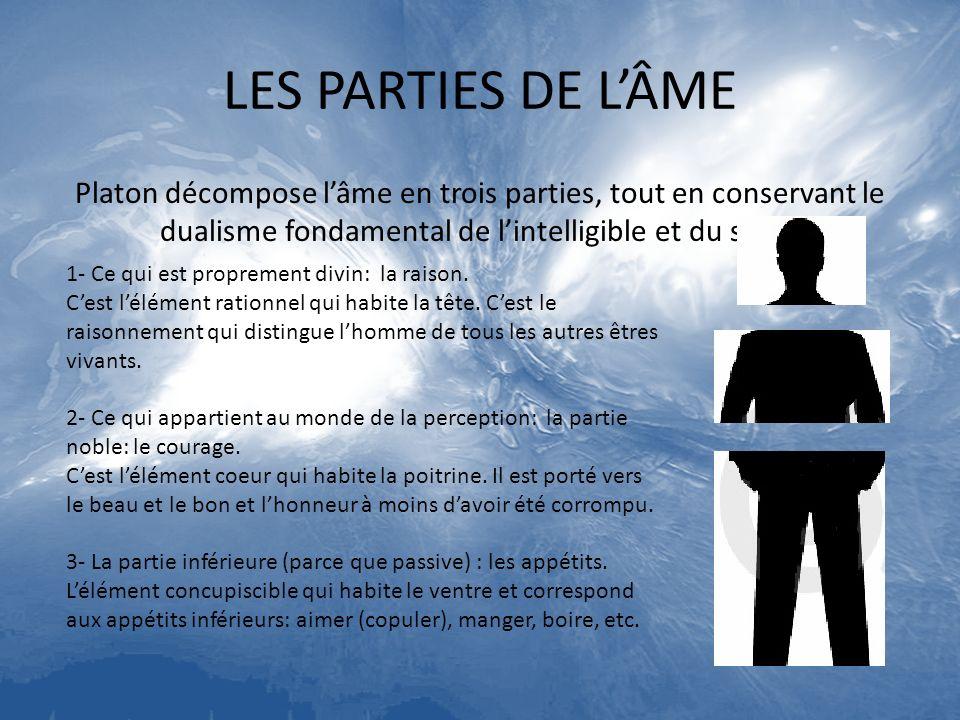 LES PARTIES DE L'ÂME Platon décompose l'âme en trois parties, tout en conservant le dualisme fondamental de l'intelligible et du sensible.