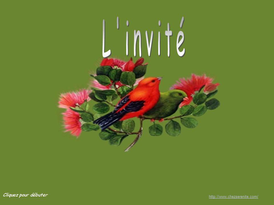 L invité Séré Cliquez pour débuter http://www.chezserenite.com/