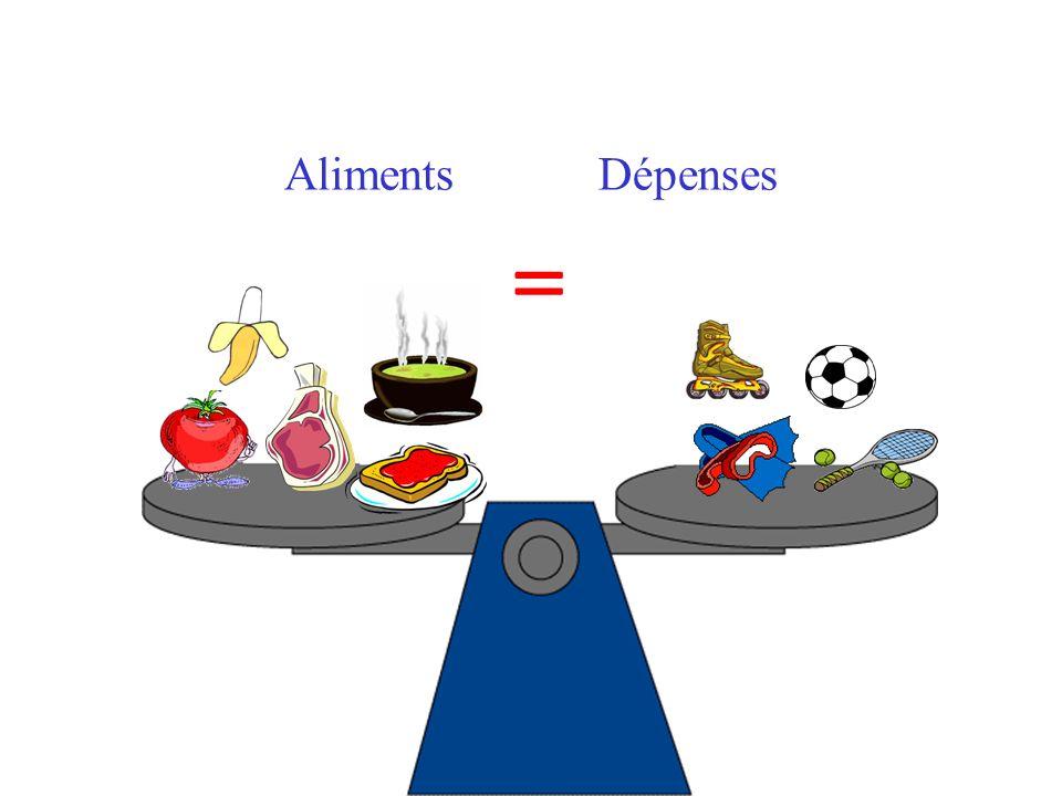 Aliments Dépenses =