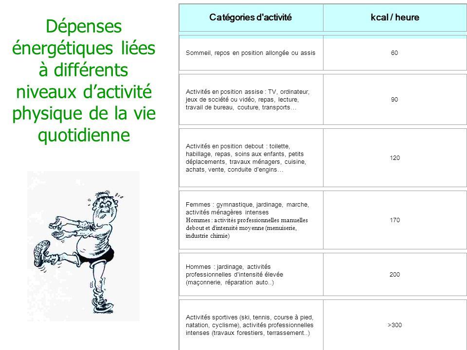 Dépenses énergétiques liées à différents niveaux d activité physique de la vie quotidienne