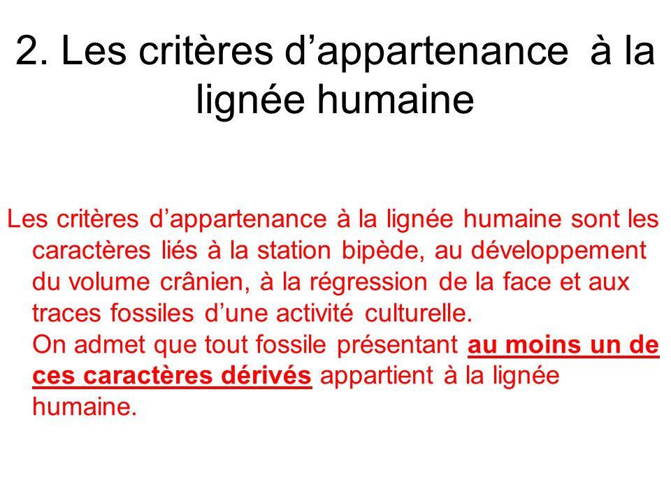 2. Les critères d'appartenance à la lignée humaine