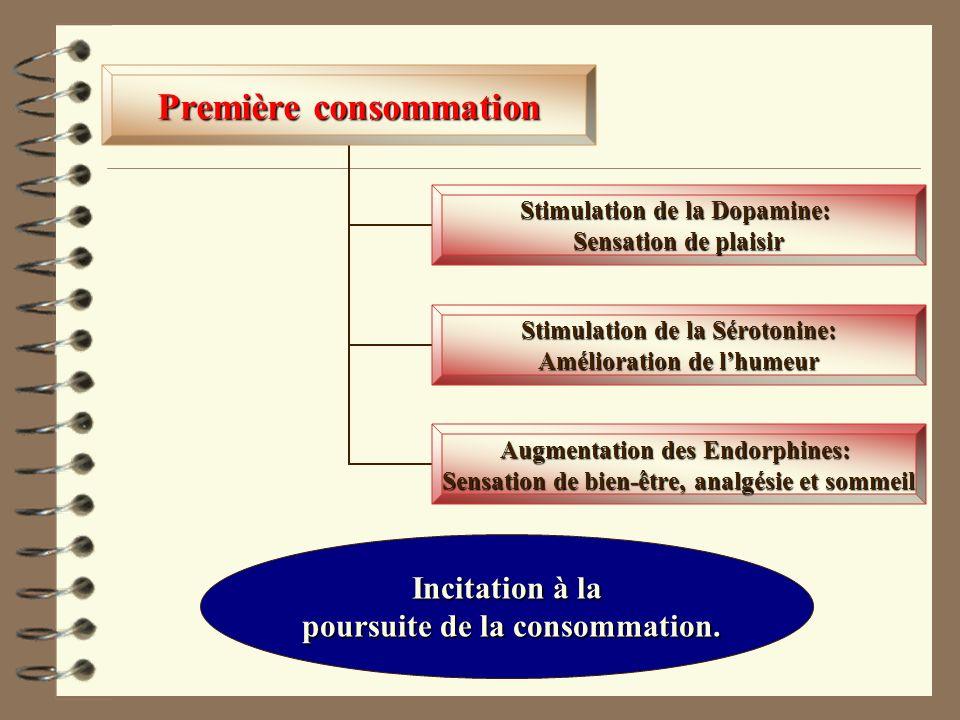 Incitation à la poursuite de la consommation.