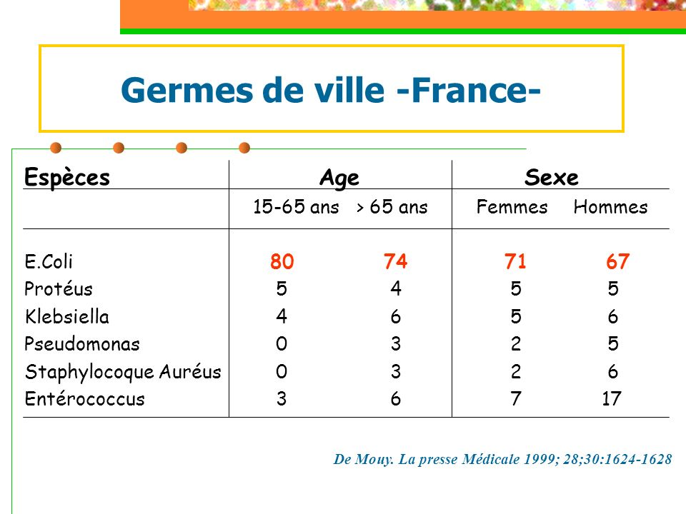 Germes de ville -France-